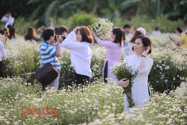 Được biết, những bó hoa được bán ở trong vườnphục vụ các vị khách tới chụp ảnh giá chỉ cao hơn 1 chút so với mua ở bên ngoài từ 10.000đ đến 20.000đ/bó.