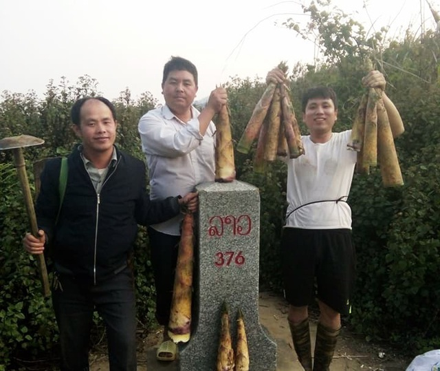 Thầy Vi Văn Mùi (ngoài cùng bên phải) cùng đồng nghiệp đi hái măng rừng cải thiện bữa ăn sau giờ lên lớp (ảnh FBNV).