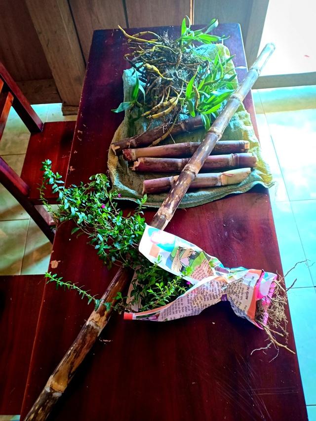 Sản vật núi rừng được các cháu gói cẩn thận dù không phải là những hộp quà xinh xắn