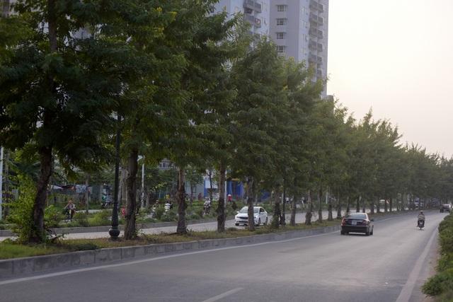 Tuyến phố Hà Nội được đề xuất đặt theo tên nhà tư sản yêu nước Trịnh Văn Bô - 8