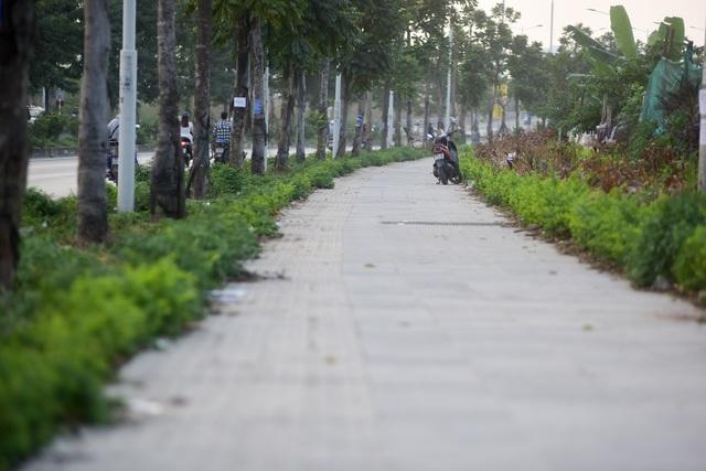 Tuyến đường có vỉa hè rộng hai bên.
