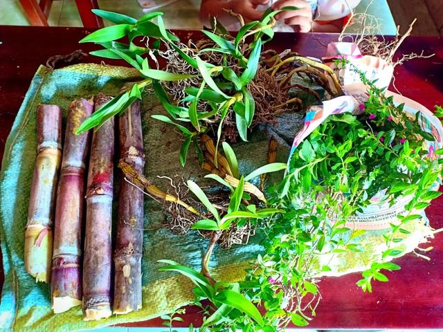 Những khúc mía, chùm lan rừng và bó hoa dại của các cháu học sinh vùng cao tặng cô giáo mình nhân ngày 20/11