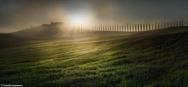 Những bức ảnh đẹp nhất giải thưởng Nhiếp ảnh quốc tế Epson - 10