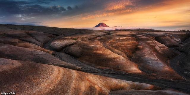 Những bức ảnh đẹp nhất giải thưởng Nhiếp ảnh quốc tế Epson - 8