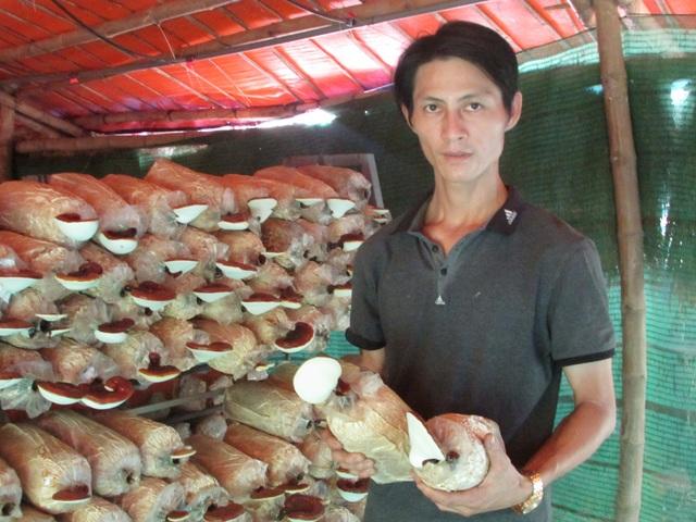 Anh Hùng giới thiệu về trại nấm của mình
