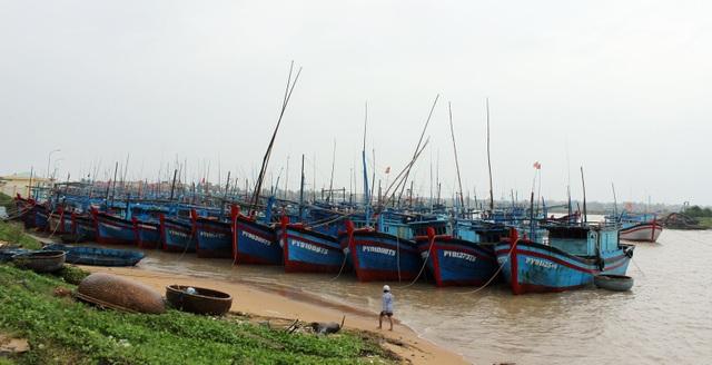 Tàu thuyền được đưa vào neo đậu tại Phường Phú Đông (TP. Tuy Hòa) để trốn tránh bão