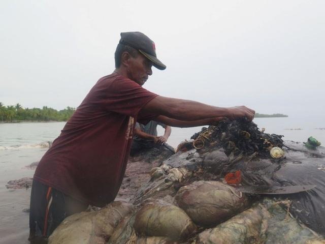 Một xác cá voi với 115 cốc nhựa trong bụng ở Indonesia - 3