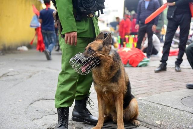 Một chú chó nghiệp vụ cùng cán bộ công an đang làm nhiệm vụ trên sân Hàng Đẫy.