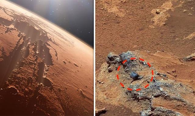 Hình ảnh được cho là hoá thạch của người ngoài hành tinh trên sao Hoả.