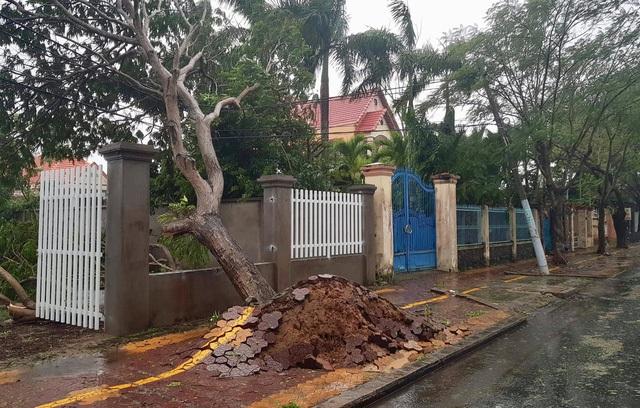 Sài Gòn ngập khắp nơi, cây đổ đè người đi đường tử vong - 22