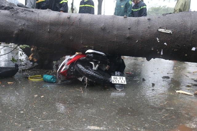 Sài Gòn ngập khắp nơi, cây đổ đè người đi đường tử vong - 5