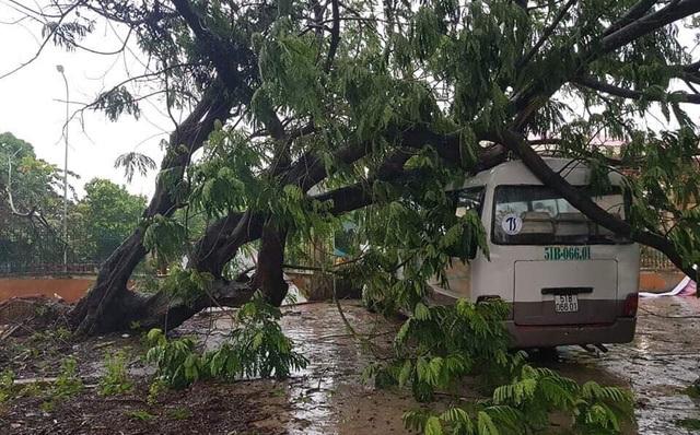 Sài Gòn ngập khắp nơi, cây đổ đè người đi đường tử vong - 23