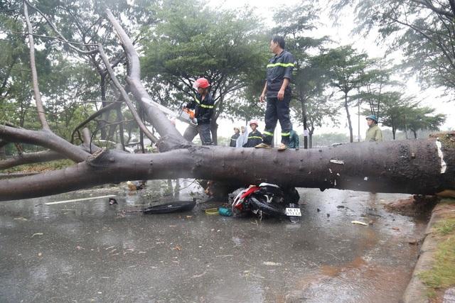 Sài Gòn ngập khắp nơi, cây đổ đè người đi đường tử vong - 4