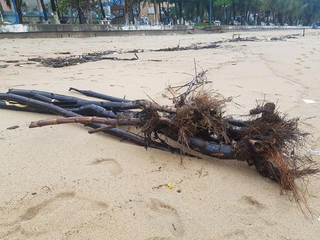 """Nha Trang: Bãi biển bị rác từ thượng nguồn """"tấn công"""" sau mưa lũ - 4"""