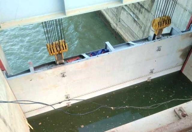 Sự việc xảy ra kể từ khi nhà máy thủy điện Cẩm Thủy 1 tích nước.