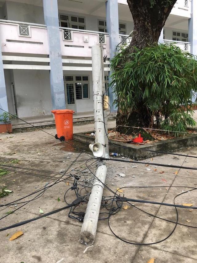 Cây và cột điện đổ tại Trường THPT Hoàng Hoa Thám, TPHCM (Ảnh: Fanpage của trường)