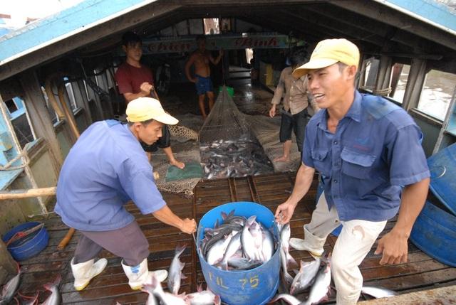 Trong năm 2019 và những năm tiếp theo, An Giang tiếp tục phát triển ngành cá tra theo hướng bền vững, gắn liền với bảo vệ môi trường, áp dụng công nghệ cao vào trong nuôi trồng và chế biến.