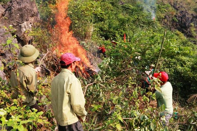 Tình huống giả định, đám cháy rừng nhanh chóng lan rộng ra các vùng lân cận.