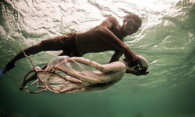 Người Bajau Laut ở Indonesia có khả năng lặn biển siêu đẳng.