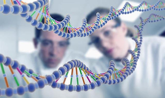 """Các nhà khoa học vừa tìm ra những bằng chứng cho thấy cả loài người hiện nay đều có cùng một """"cha,mẹ"""" cách đây 200.000 năm."""