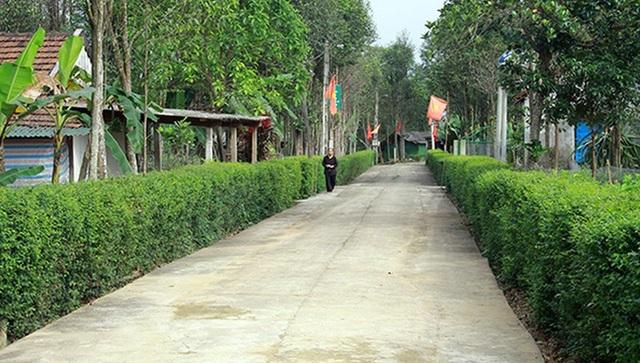 Những khu vườn với hàng rào xanh ở thôn Nam Trà tạo ấn tượng mạnh.