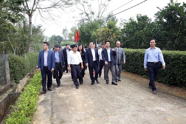 Phó Thủ tướng Vương Đình Huệ cùng đoàn tham quan các vườn mẫu tại thôn Nam Trà.