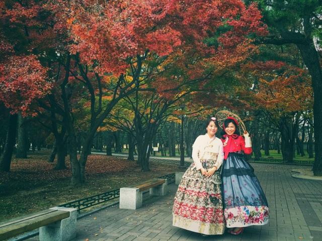 Đường vào công viên khiến du khách mãn nhãn với sắc lá đỏ lá vàng vô cùng lãng mạn. Thi thoảng, du khách sẽ bắt gặp những chị em Hàn Quốc mặc trang phục truyền thống.