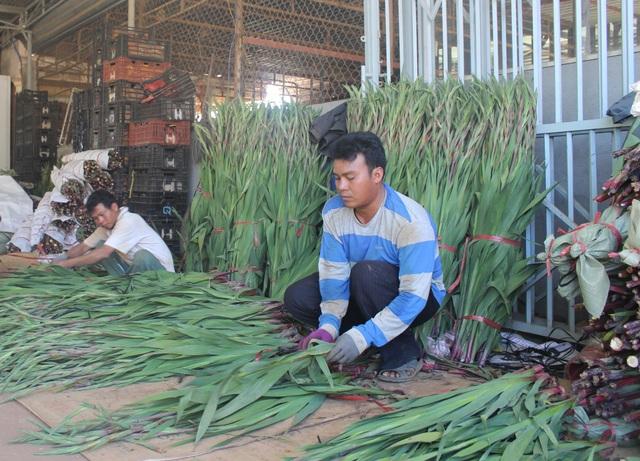 Mỗi năm, tỉnh Lâm Đồng đào tạo nghề cho khoảng 1.300 lao động là người đồng bào dân tộc thiểu số (ảnh minh họa)