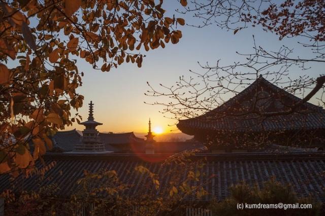 Với tuổi đời hơn 1.000 năm lịch sử, đền thờ Bulguksa là những địa điểm du lịch ở Hàn Quốc khá là hấp dẫn được công nhận là di sản thế giới bởi UNESCO vào năm 1995.