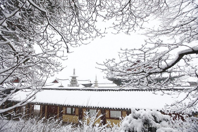 Và như lạc vào miền cổ tích những ngày mùa đông tuyết phủ trắng xoá.