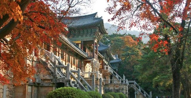 Anh Đức Thanh - Hướng dẫn viên du lịch Việt Nam tại Hàn Quốc cho biết, Phật Quốc Tự Bulguksa - được xem là một tự viện lớn, đẹp nhất và lâu đời nhất Hàn Quốc. Bulguksa được xây dựng vào thời kỳ đầu triều đại Silla, triều đại hưng thịnh của Phật giáo Hàn Quốc.