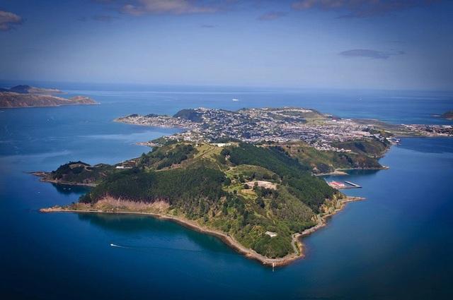 Wellington, New Zealand nhìn từ trên cao. Một nghiên cứu mới đây cho biết trận động đất Kaikoura đã đẩy Mũi Campbell ở bờ bắc Đảo Nam tiến gần 35 cm về phía thành phố Wellington nằm ở ngay Eo Cook của Đảo Bắc.