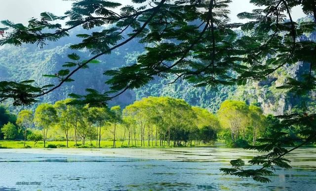 Núi non, sông nước hài hòa là những điểm nhấn thu hút ở suối ấu