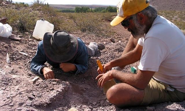 Một loài khủng long hoàn toàn mới đã được các nhà cổ sinh vật học tìm thấy tại Argentina.