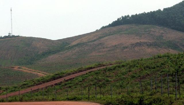 Đất rừng sản xuất của người dân các xã Cẩm Mỹ, Cẩm Quan (huyện Cẩm Xuyên) và Kỳ Tây, Kỳ Hợp (huyện Kỳ Anh) được thu hồi, cạo trọc để phục vụ dự án.