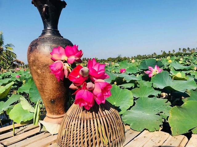 Tiểu cảnh sáng tạo với Sen và gốm Bàu Trúc- một nét văn đặc sắc của người Chăm Ninh Thuận
