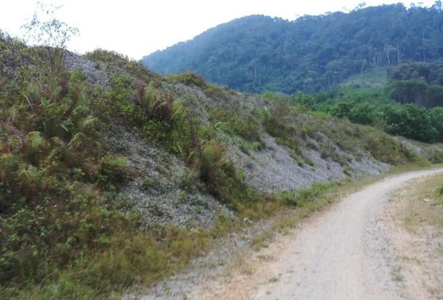 Nhiều đống đá được chất đống bên đường