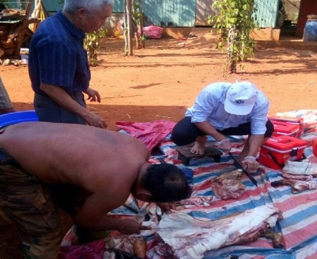 Người dân tự làm thịt lợn tại nhà ở khu vực Bù Gia Mập, Bình Phước