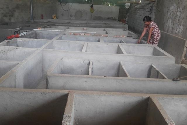 Trang trại nuôi dúi của Lâm với hàng trăm chuồng.