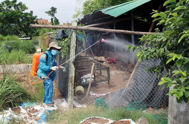 Cán bộ thú y phun tiêu độc hằng ngày tại ổ dịch cúm A/H5N6 thuộc thôn Đông Bình, xã Hòa An