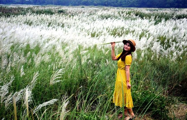 Cánh đồng hoa cỏ lau chỉ cách trung tâm TP. Quảng Ngãi khoảng 2 km. Đây hiện là địa điểm sống ảo ưa thích của nhiều bạn trẻ.