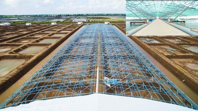Trang trại tôm Việt – Úc với quy mô 50 hecta và khu phức hợp quy mô 310 hecta do LYSAGHT Vietnam cung cấp giải pháp chuồng trại LYSAGHT AGRISHED™