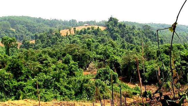 Tình trạng người dân ngang nhiên lấn chiếm đất rừng đã được lực lượng chức năng ghi nhận, song chưa có giải pháp ngăn chặn.