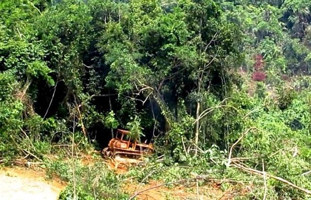 Một số đối tượng tự ý đưa máy móc vào san ủi đất rừng
