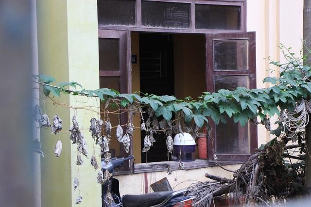 Trụ sở cơ quan nhà nước bị bỏ hoang suốt 10 năm ở Hà Nội - 11