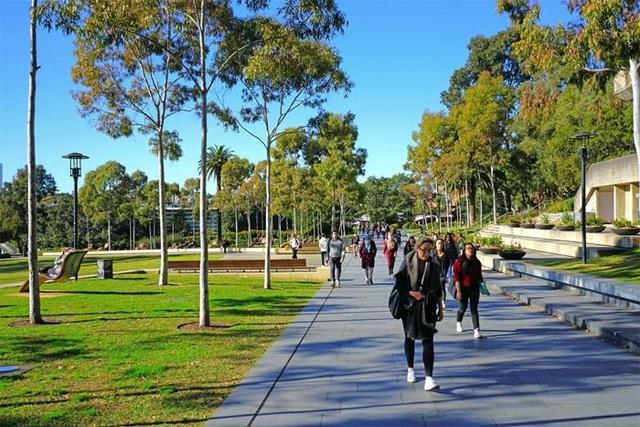 Bí quyết lựa chọn chương trình chuyển tiếp Đại học và Dự bị thạc sĩ tại Úc - 2