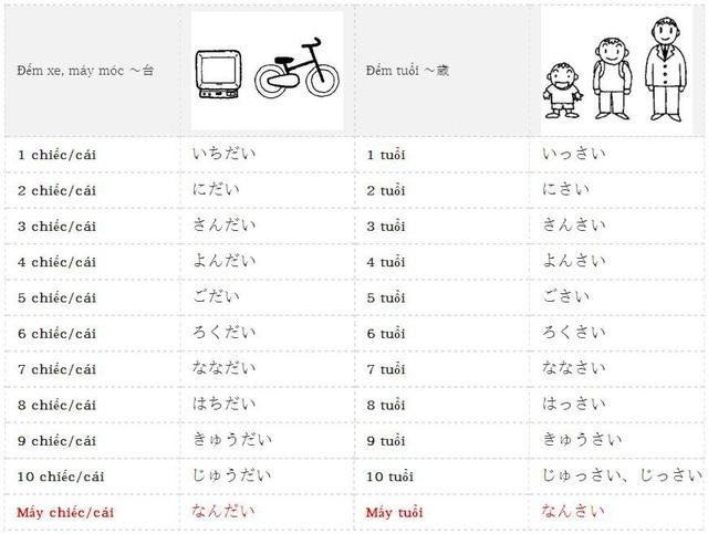 Học tiếng Nhật: Tổng hợp kiến thức ngữ pháp bài 11 giáo trình Minna no Nihongo - 1