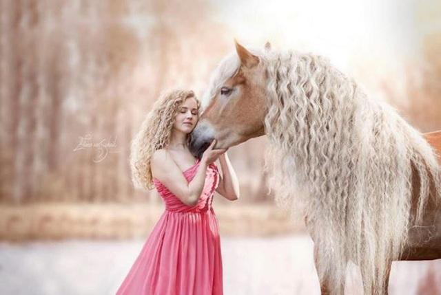 Chú ngựa và chủ nhân có mái tóc xoăn lượn sóng sáng màu giống hệt nhau