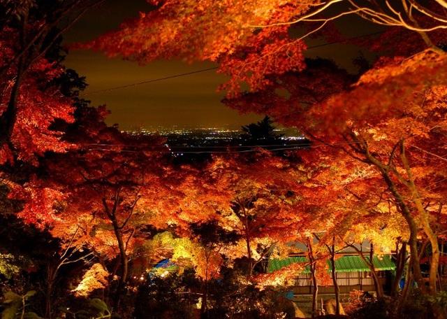 Những địa điểm ngắm lá vàng lá đỏ nổi tiếng nhất nước Nhật - 7
