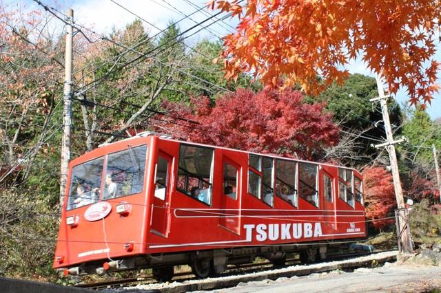 Những địa điểm ngắm lá vàng lá đỏ nổi tiếng nhất nước Nhật - 9